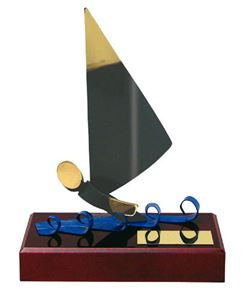 Picture for category Windsurfing Trophies & Medals