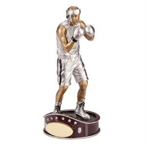 Picture for category Boxing Trophies & Medals
