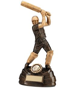 Picture for category Cricket Trophies & Medals