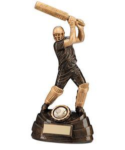 Cricket Trophies & Medals