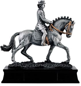 Equestrian Trophies & Rosettes