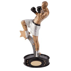 Picture for category Kickboxing Trophies & Medals