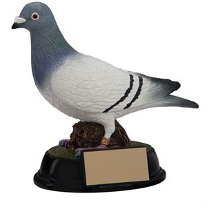 Pigeon Racing Trophies & Medals