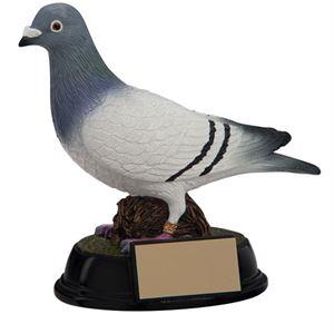 Pigeon Racing Trophies & Medals