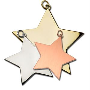 Star Medals for Clay Pigeon Shooting