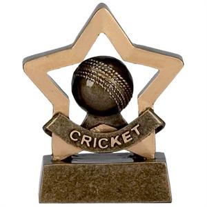 Mini Star Cricket Trophy - A969