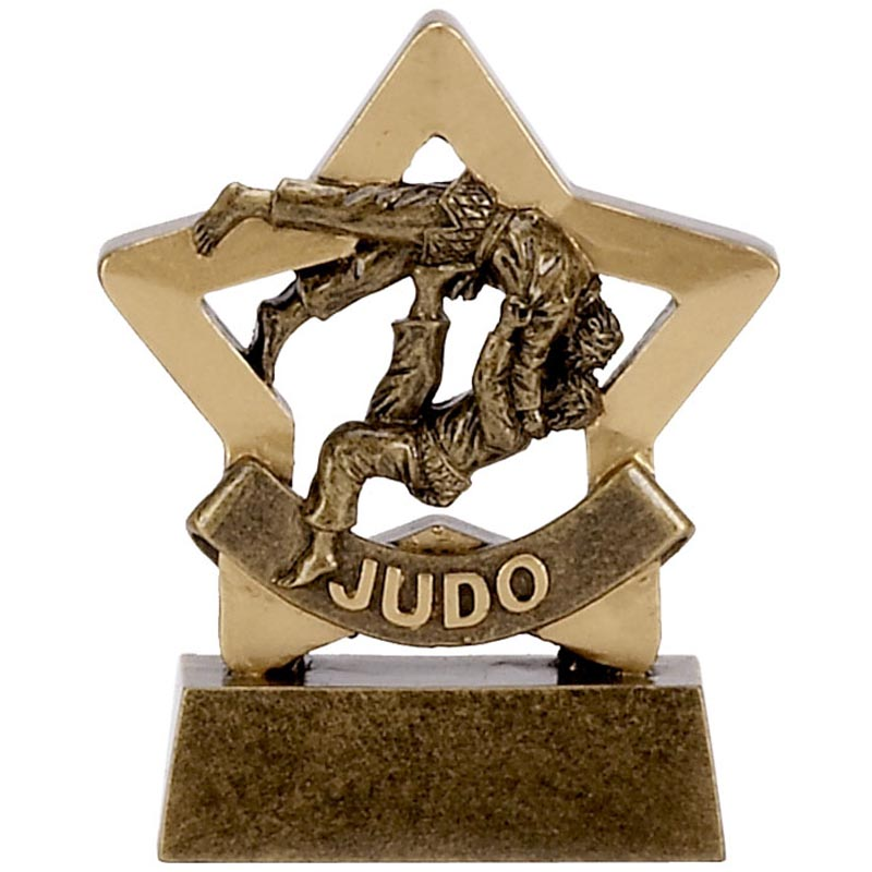 Mini Star Judo Trophy - A1113