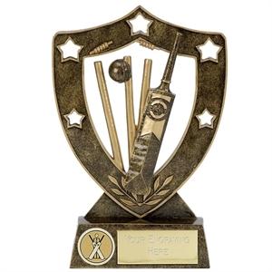 Shield Star Cricket Award - N01037