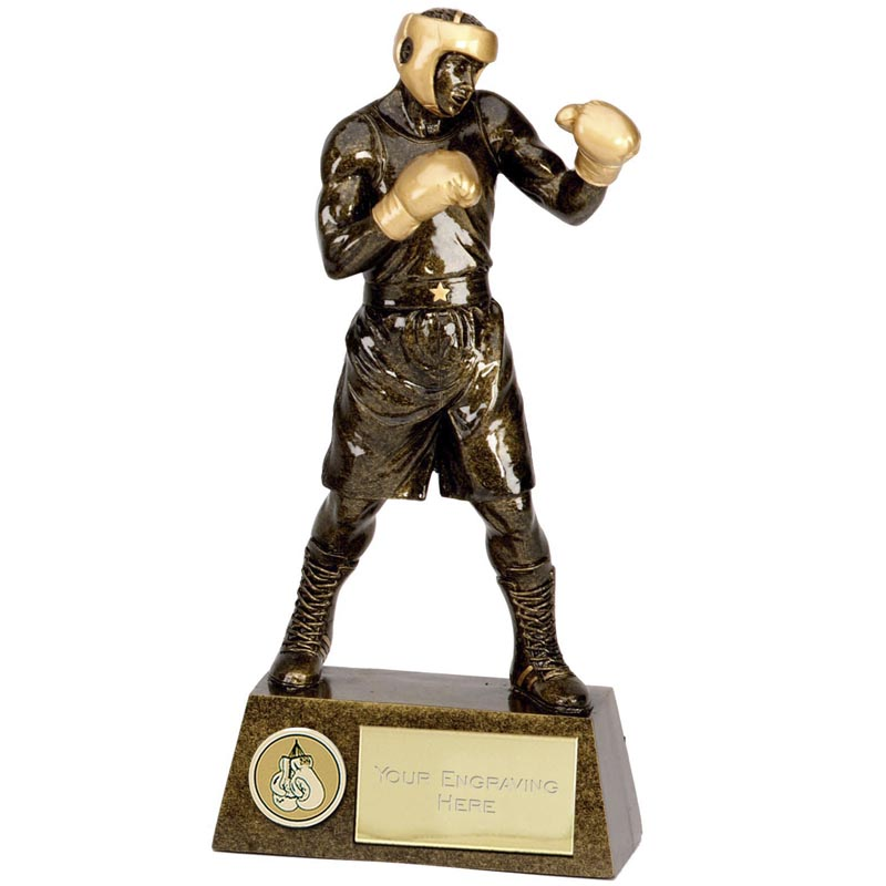 Pinnacle Boxing Trophy - A1249