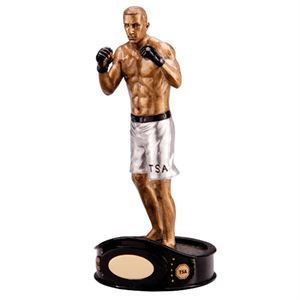 The Ultimate MMA Trophy