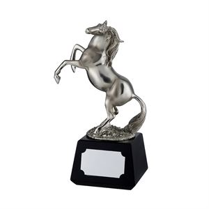 Silver Finish Horse Award - RW16