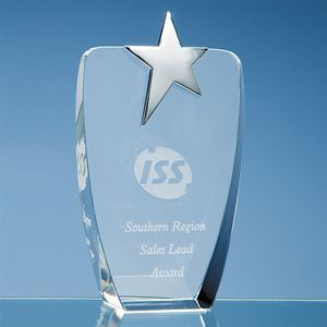 Optical Crystal Oval Award with Silver Star - SY2041
