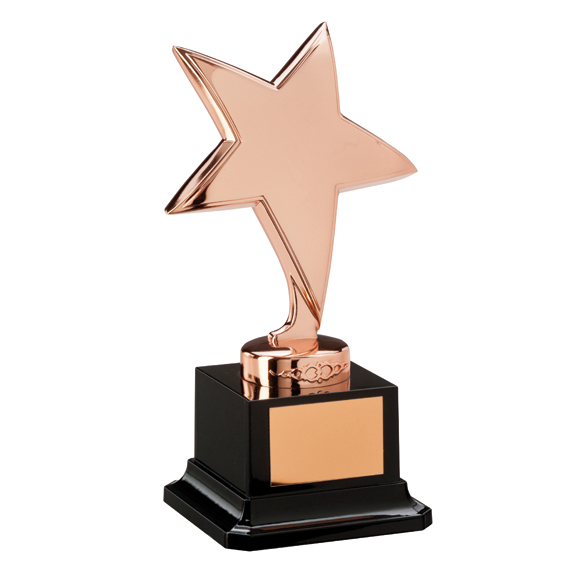 The Challenger Star Bronze Award - NP1782