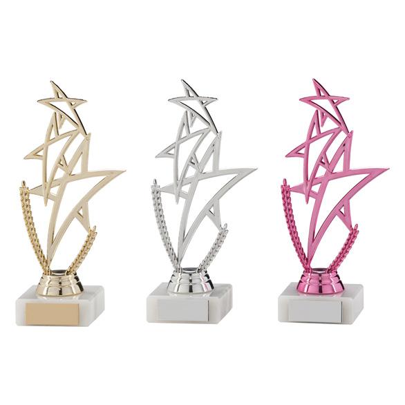 Rising Star Multi-Sport Trophy - TR17545