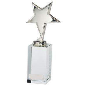 Dallas Crystal and Chrome Award