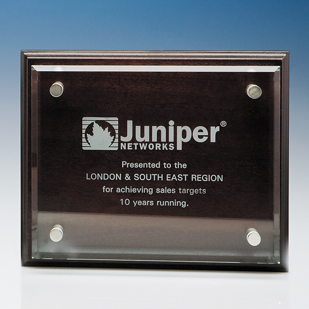 Clear Rectangle mounted on a Mahogany Plaque - IR2