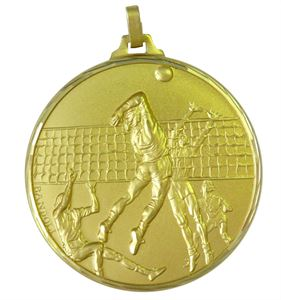 Gold Faceted Volleyball Medal (size: 52mm) - 261F