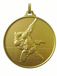 Gold Economy Judo Medal (size: 52mm) - 126E