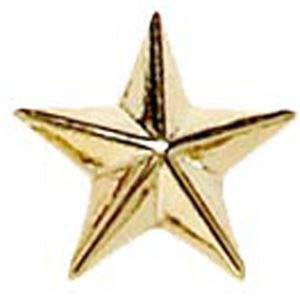 Raised Star Metal School Badge - Gold