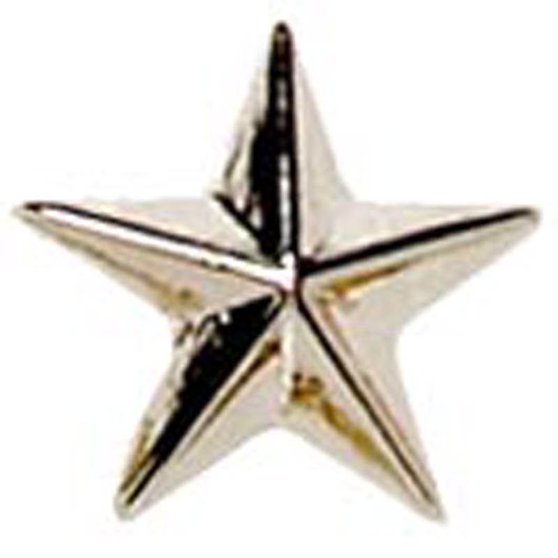 Raised Star Metal School Badge - Silver