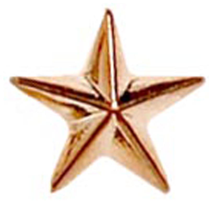 Raised Star Metal School Badge - Bronze