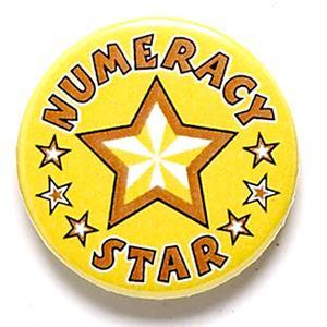 Numeracy Star School Button Badge