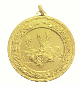 Gold Laurel Economy Judo Medal (size: 50mm) - 4195E