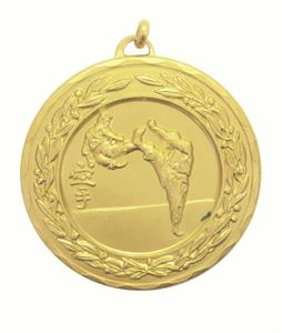 Laurel Economy Karate Medal