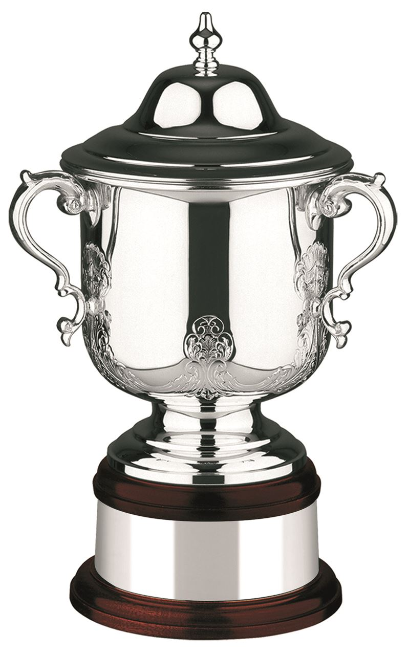 The League Champions Hand Chased Silver Plated Cup - L560