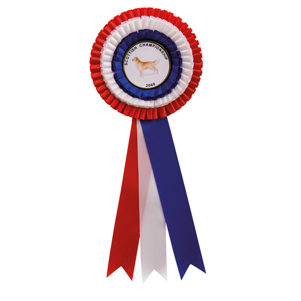 Union Red, White and Blue Rosette - RO7416