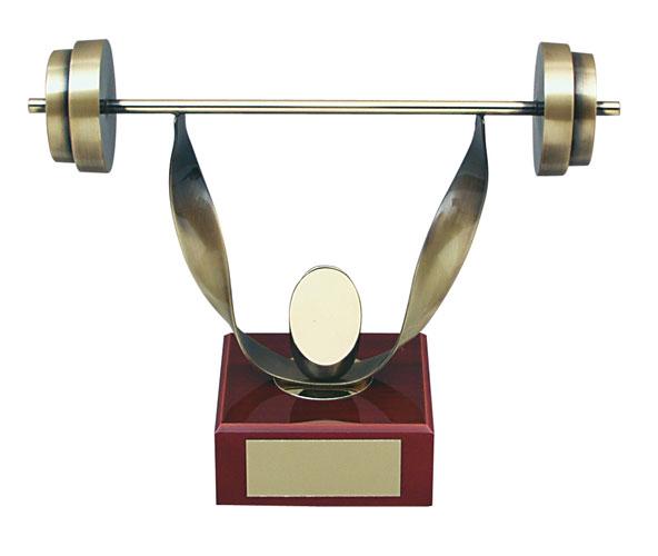 Powerlifting Handmade Metal Trophy - 507