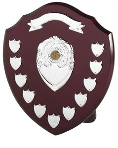Traditional Presentation Annual Shield With Scroll (size: 355mm) - SV14