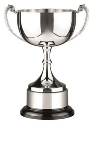280mm TALL SILVER /& GREEN UNIQUE TROPHY CUP *FREE PLATE ENGRAVING* BEST VALUE