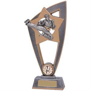 Star Blast Karate Trophy - PL18149