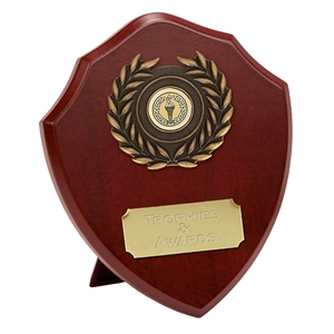 Triumph Shield Award - W273Q