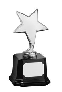 Bright Finish Star Award Silver - SZ031S