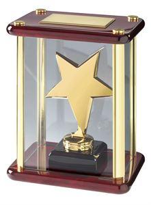 Bright Finish Star Case Award Gold - TZ001G