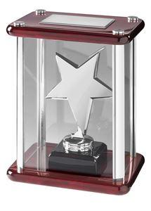 Bright Finish Star Case Award Silver - TZ001S