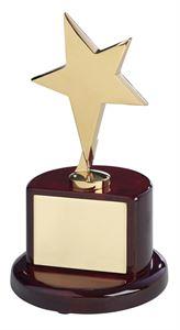 Bright Finish Gold Metal Star Award - TZ006G