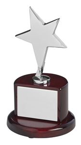 Bright Finish Silver Metal Star Award - TZ006S