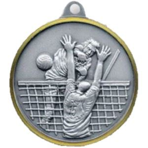 Bulk Purchase - Volleyball Brass Medal - 220