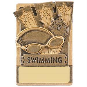 Mini Magnetic Swimming Award - RK039