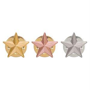 3D Star Pin Badge - SB19000