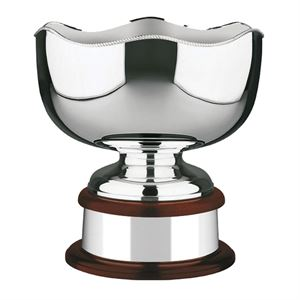 The World Cup Silver Plated Bowl  - 453