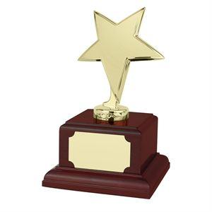 Bright Finish Star Gold Award Rosewood Plinth - SZ050G