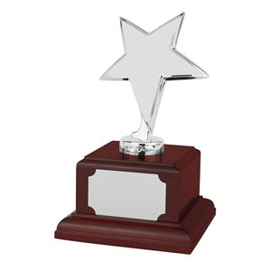 Bright Finish Star Silver Award Rosewood Plinth - SZ050S