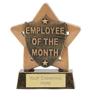 Mini Star Employee of the Month Award - A1903