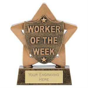 Mini Star Worker of the Week Award - A1905