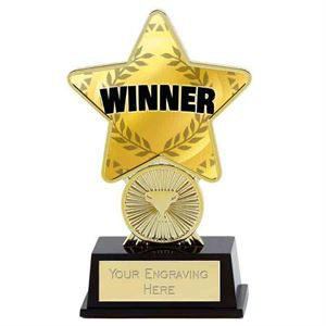 Personalised Geography Trophy award mini star *Free Engraving*