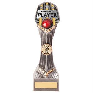 Falcon Cricket Coach's Player Award - PA20604E